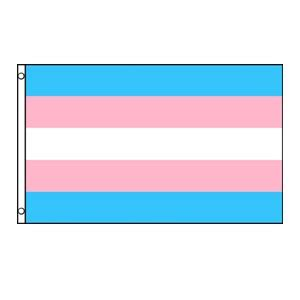 Transgender offenders a literature review